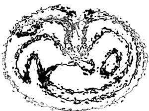kruzhenie